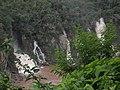 PC140018 foto do caminho para a passarela 01.jpg