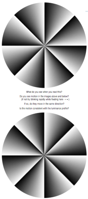Peripheral drift illusion - Two images that exhibit peripheral drift illusion. The different pattern of light and dark causes the two circles to appear to rotate in opposite directions.