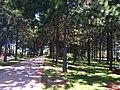 PQ da Cidade - Jundiai - SP - panoramio (9).jpg
