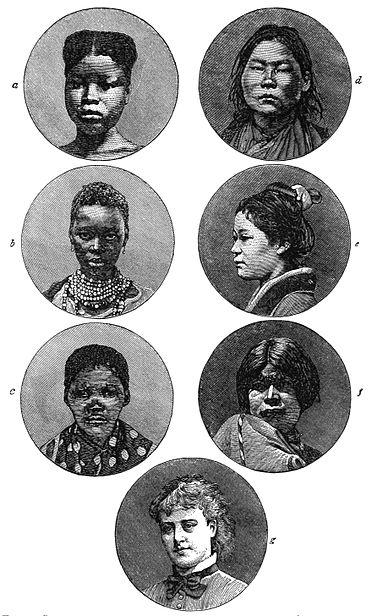 PSM V19 D307 Female portraits of various races.jpg