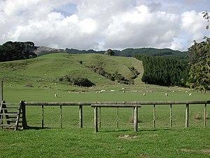 Battle Hill Farm Forest Park - Image: Paddocks in Battle Hill Farm