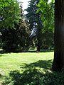 Padova juil 09 142 (8187883009).jpg