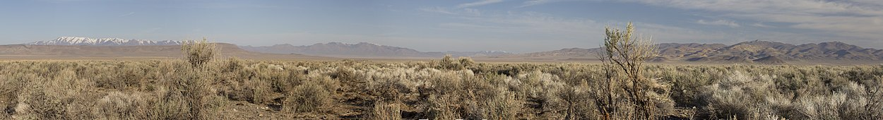 Panoramic View of Sagebrush Habitat, Central Nevada (8161830673).jpg