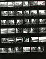 Paolo Monti - Servizio fotografico - BEIC 6335063.jpg
