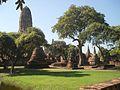 Parco storico di Ayutthaya 3.jpg