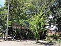 Parque Ecológico Humedal El Samán, Parque de la Salud (1). Cartago, Valle, Colombia.JPG