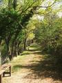 Parque Natural de Sierra de Baza (Granada).png