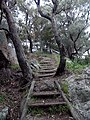 Path to Wagon Rock - panoramio.jpg
