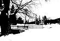 Pavlovsk Railing of bridge Yellow palace Winter bw threshold.jpg