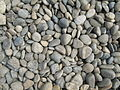 Pebbles from the Danube.JPG