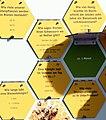 Pedagogical bee trail in Kirchlauter 06.jpg
