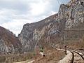 Pester Plateau, Serbia - 0146.CR2.jpg