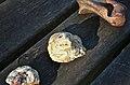 Phosphatières du Cloup d'Aural - 20140925 - Phosphate 1.jpg