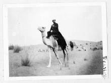 Tuareg guerrero del desierto online dating 5