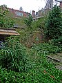 Photo of city-garden in Amsterdam in April 2012, behind the houses of Padangstraat; Indische buurt Amsterdam-OOst.jpg