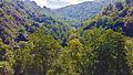 Picos de Europa desde Covadonga.jpg