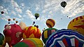Pigs can fly, and other balloons. (8182918719).jpg