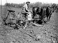 PikiWiki Israel 229 motek-g-sh גן-שמואל-הכנת חלקה לזריעת תפוחי אדמה.png