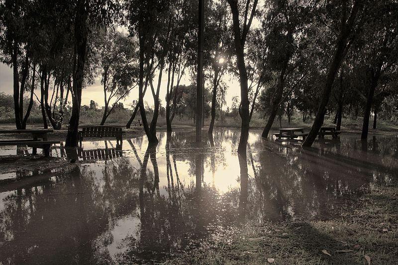 שקיעה פארק הרצליה מוצף לאחר גשמים