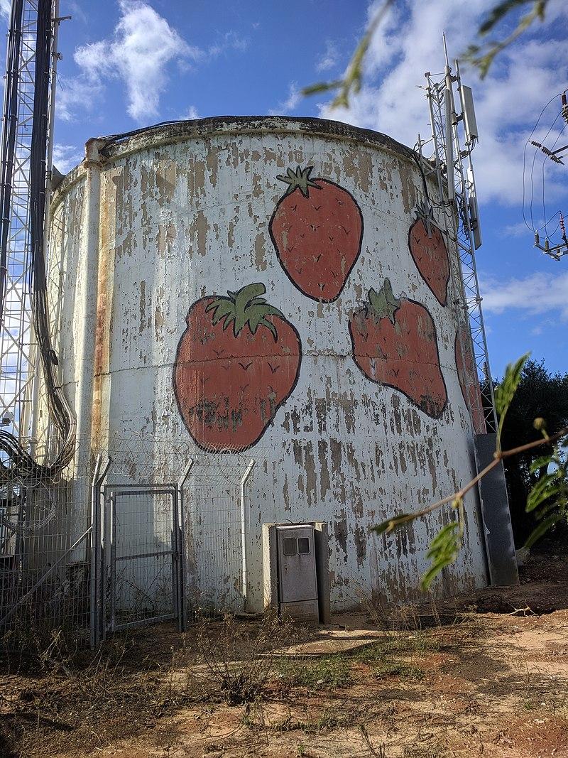 ברכת מים תותים, רמת השרון