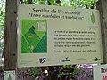 Plan du sentier de l'Osmonde des Mardelles de Prémery.jpg