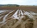 Ploughed Field, Rill Farm - geograph.org.uk - 508697.jpg