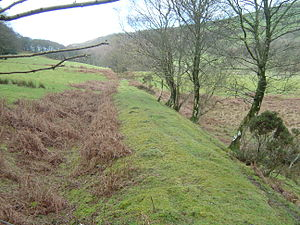 Plynlimon and Hafan Tramway - In some places, the trackbed is clearly visible, even a century after closure. This photo was taken above Pontbren-geifr.
