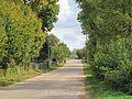 Podlaskie - Korycin - Łomy 20110925 02.JPG