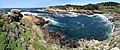 Point Lobos 10.jpg