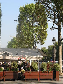 Restauration Rapide Champs Elysees Liste Rond Point