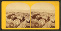 Portland Harbor, from Observatory (2), from Robert N. Dennis collection of stereoscopic views 2.png