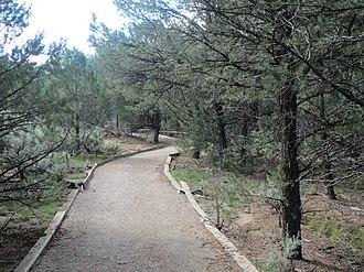 Pot Creek Cultural Site - Image: Pot Creek Trail