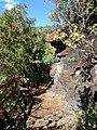 Potgietersrus, South Africa - panoramio (13).jpg