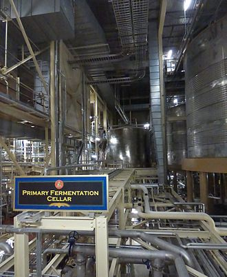 Ethanol fermentation - Primary fermentation cellar, Budweiser Brewery, Fort Collins, Colorado