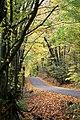 Purdue Road, Ennismore, Ontario - 365 14-10-2011 (6247471851).jpg