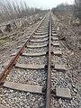 Qingzhou-Linqu Railway 2021-03-07.jpg