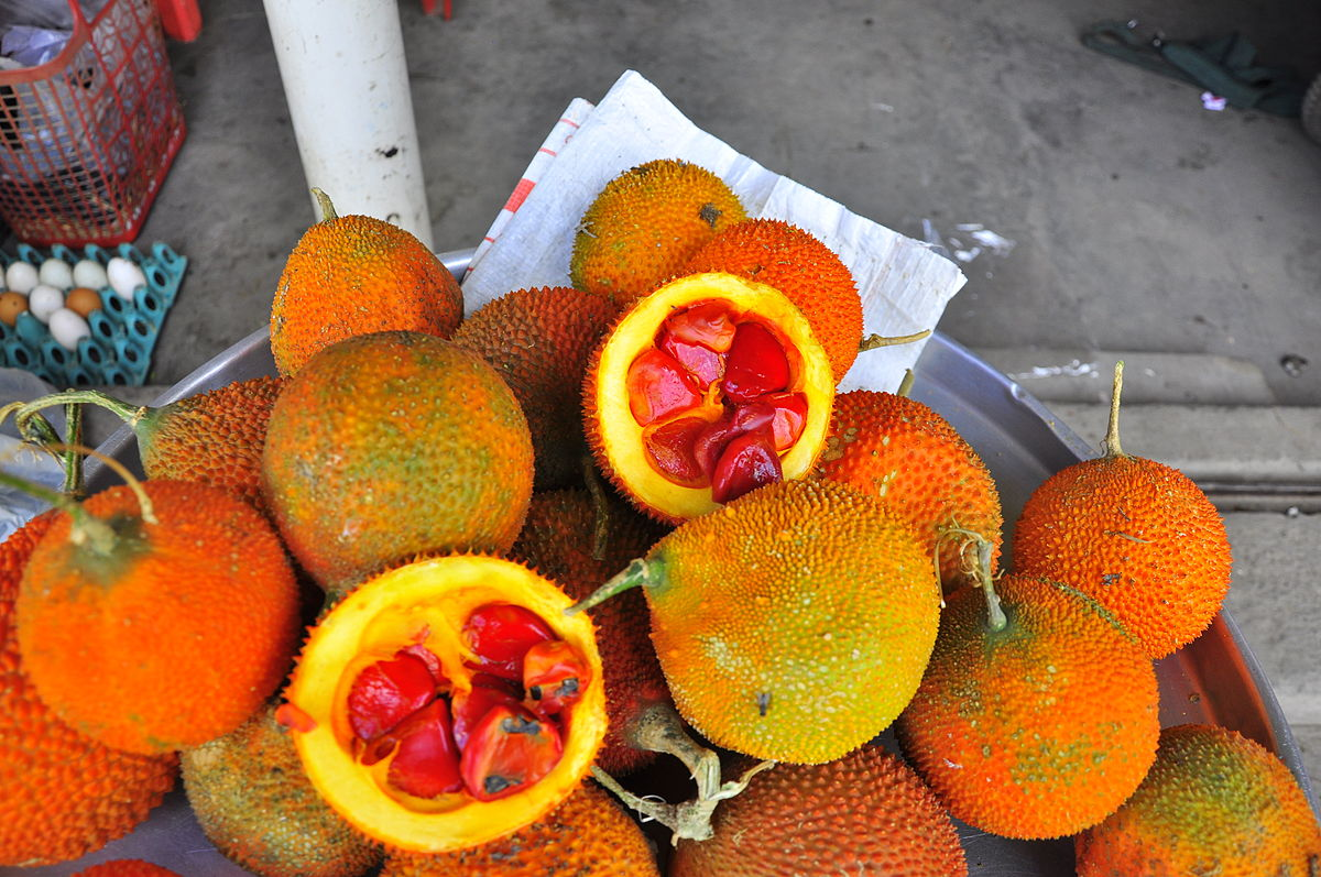 Tập tin:Qua Gac.JPG – Wikipedia tiếng Việt