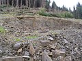 Quarry at Peat Rig in Craik Forest - geograph.org.uk - 535265.jpg