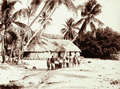Queensland State Archives 2533 Joe Rotumahs house on Darnley Island with India rubber planted in 1890 1898.png