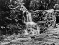 Queensland State Archives 866 Staghorn Falls Yungaburra North Queensland October 1927.png