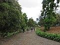 Quinta do Monte, Funchal, Madeira - IMG 6366.jpg