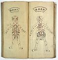Recipes on acupuncture, with drawings of the human body. Wellcome L0020849.jpg