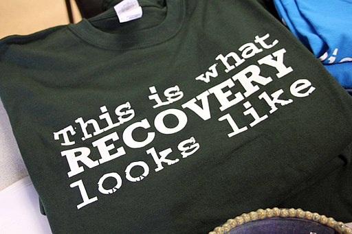 Recovery Fair 2010