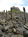 Remains of an old jetty - geograph.org.uk - 919444.jpg