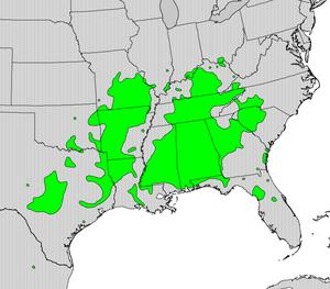 Rhamnus caroliniana - Image: Rhamnus caroliniana map