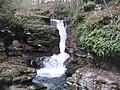 Ricketts Glen State Park Adams Falls 3.jpg