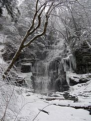 The second image, on the right, shows the cascading falls in winter. The water flows over layers of rock and is surrounded by icy, snow covered rocks and trees.