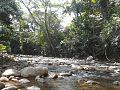 Rio en la sierra de perija.jpg