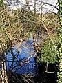 River Stour - geograph.org.uk - 1634711.jpg