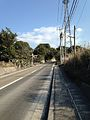 Road on Sakurajima Peninsula 2.jpg
